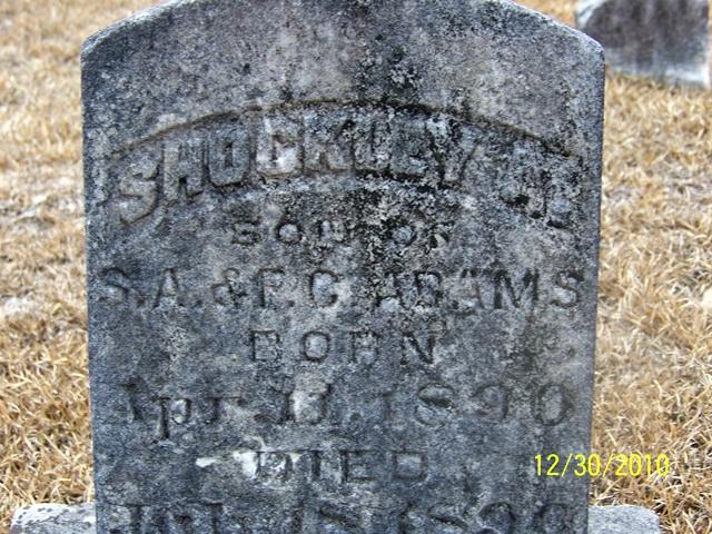 Shockley A. Adams