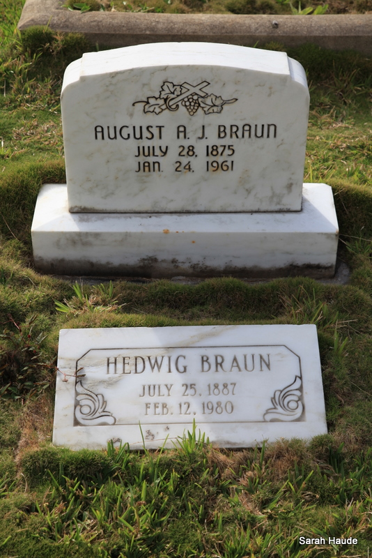 August Albert Julius Braun