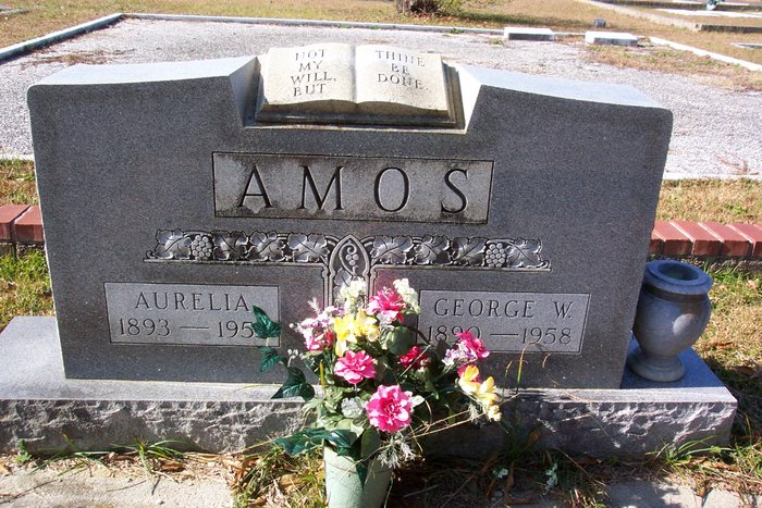 Lelia Aurelia <i>Adams</i> Amos