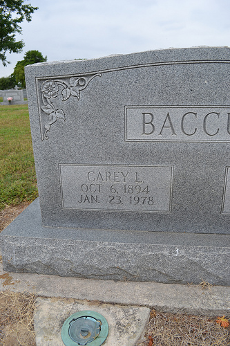 Carey Luther Baccus