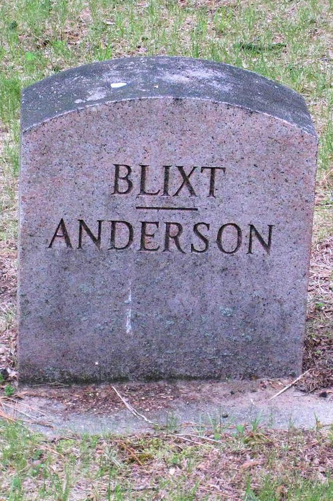 Anna Marie Mary <i>Hendrickson</i> Anderson