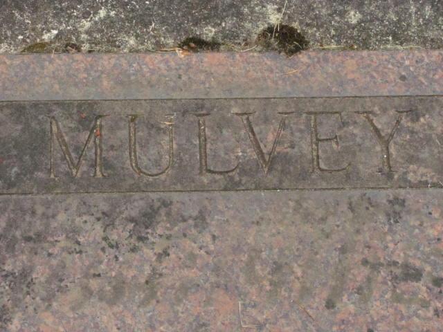 Thomas J Mulvey