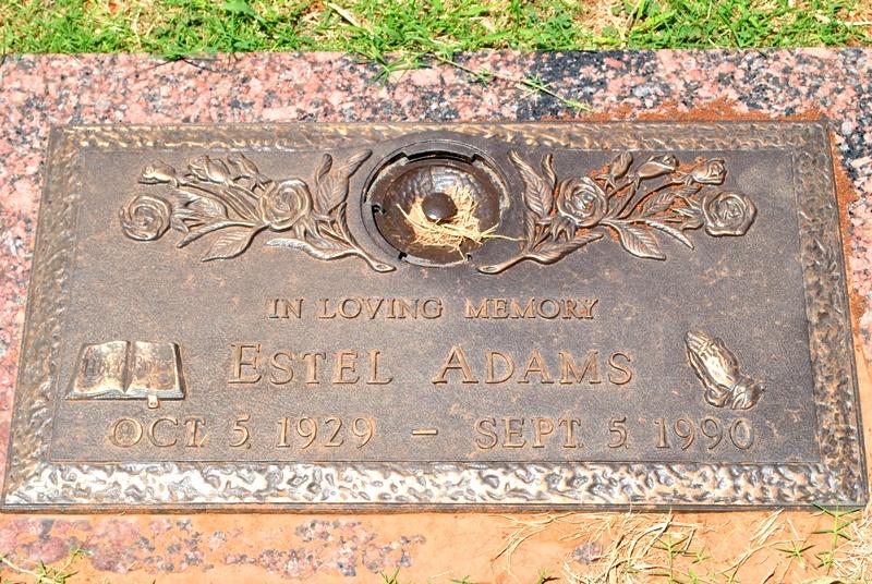 Estel Adams