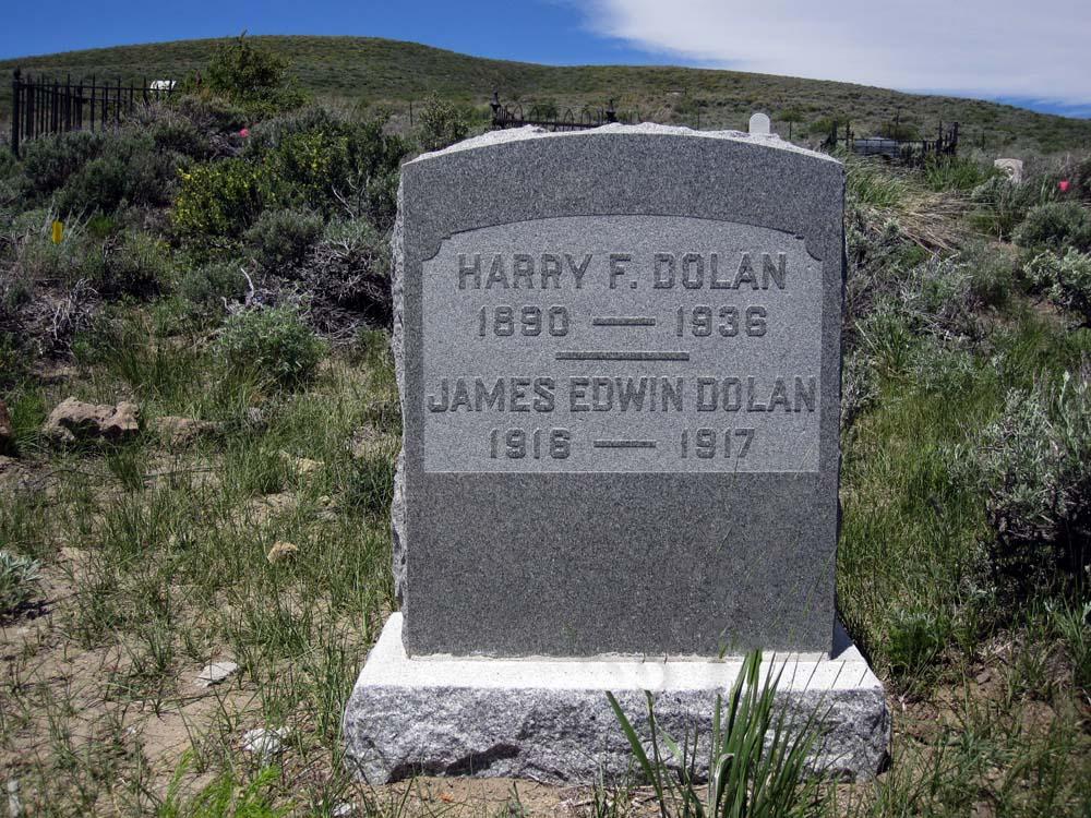 Harry Falvey Dolan