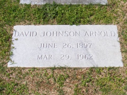 David Johnson Arnold