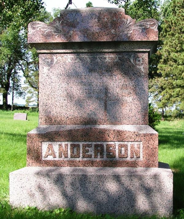 Martin L Anderson