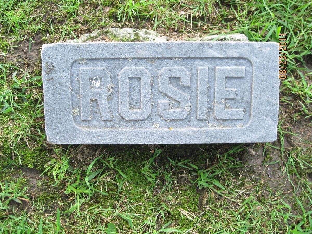 Rosie Deininger