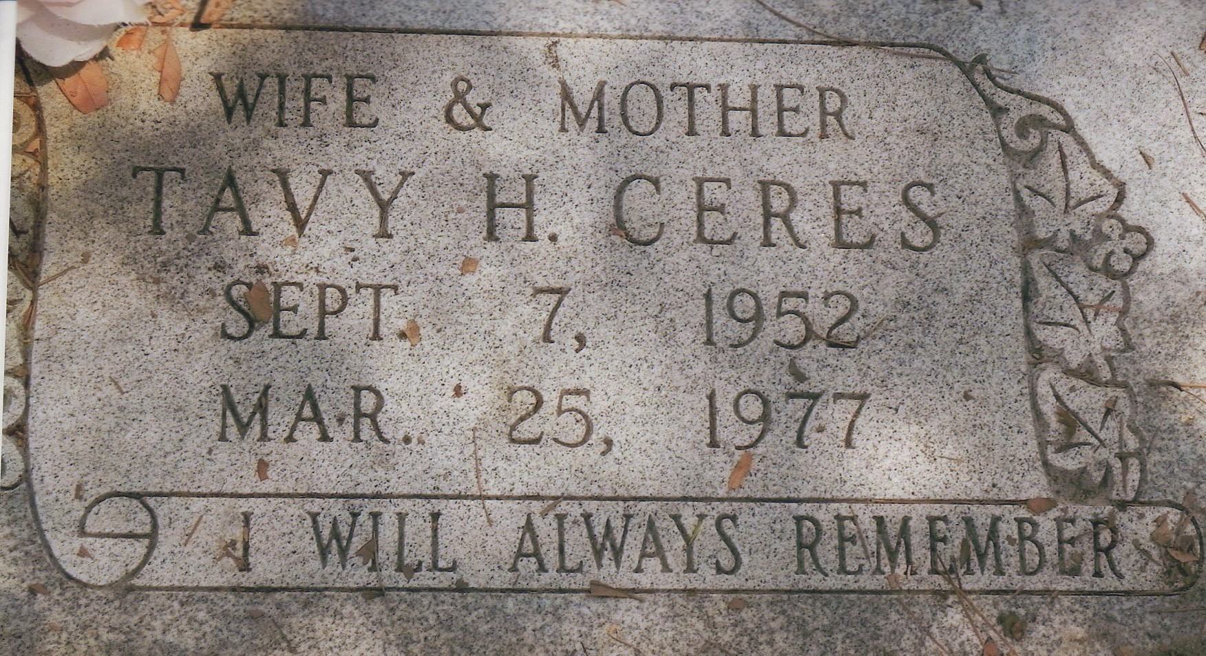 Tavy Regina <i>Hagood</i> Ceres