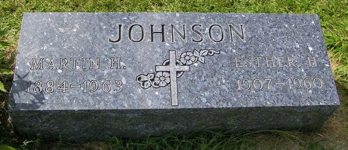 Martin H. Johnson