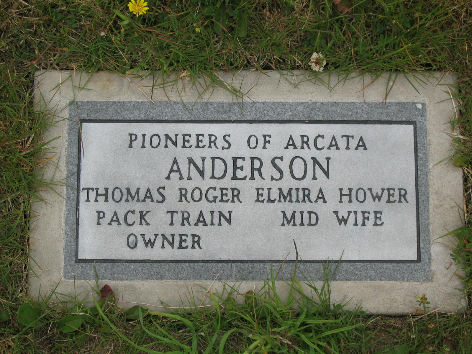 Elmira Alice <i>Hower</i> Anderson