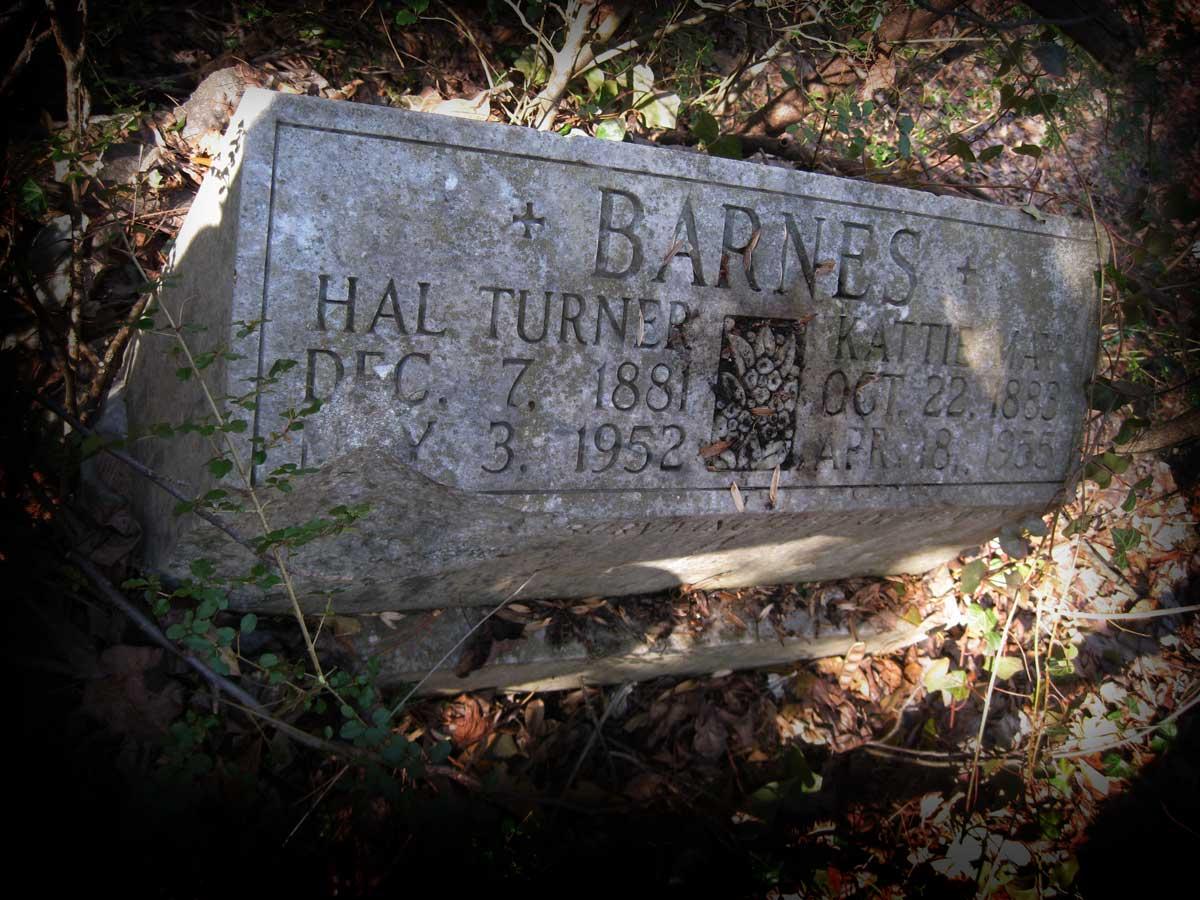 Hal Turner Barnes