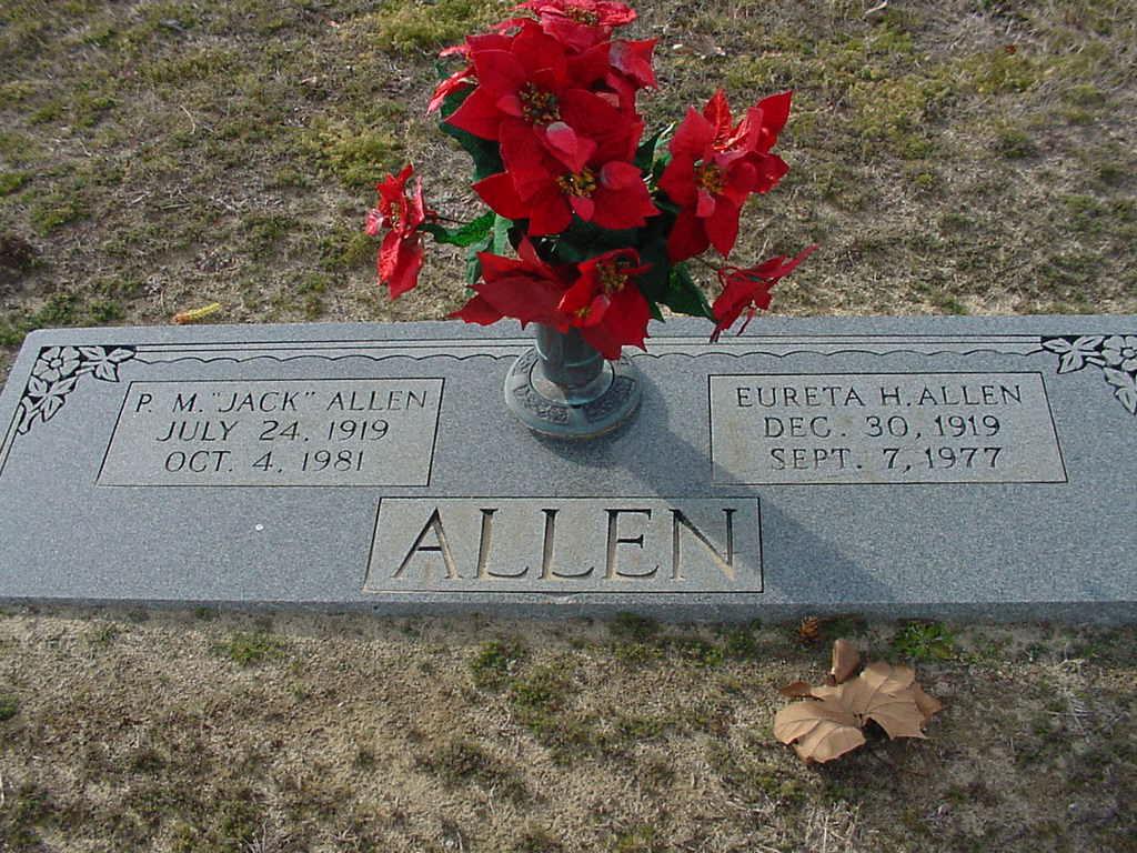 Eureta <i>Herring</i> Allen