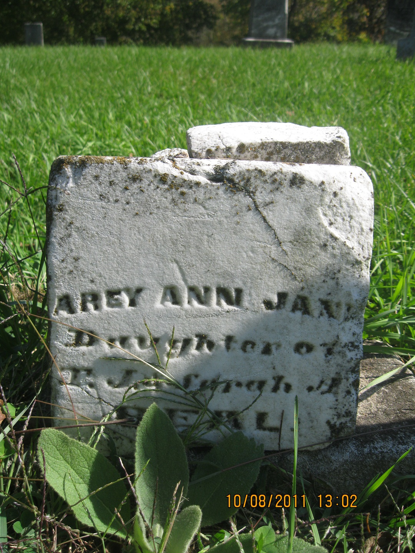 Arey Ann Beal