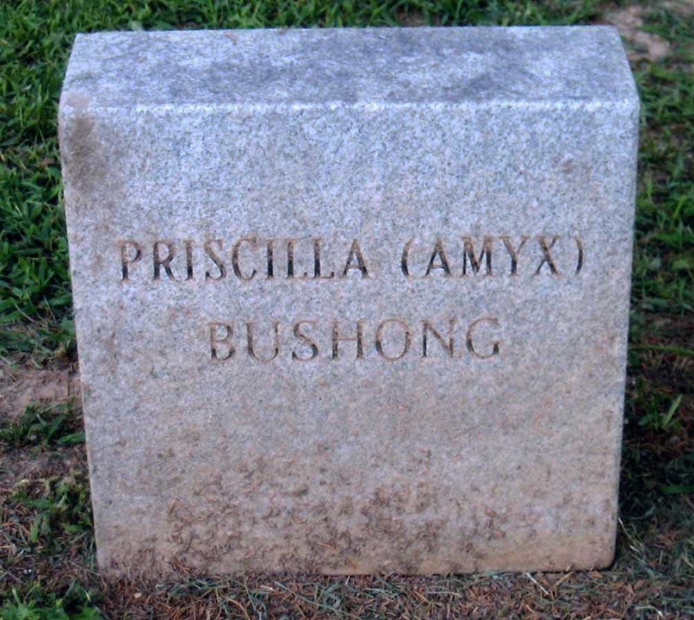Priscilla <i>Amyx</i> Bushong