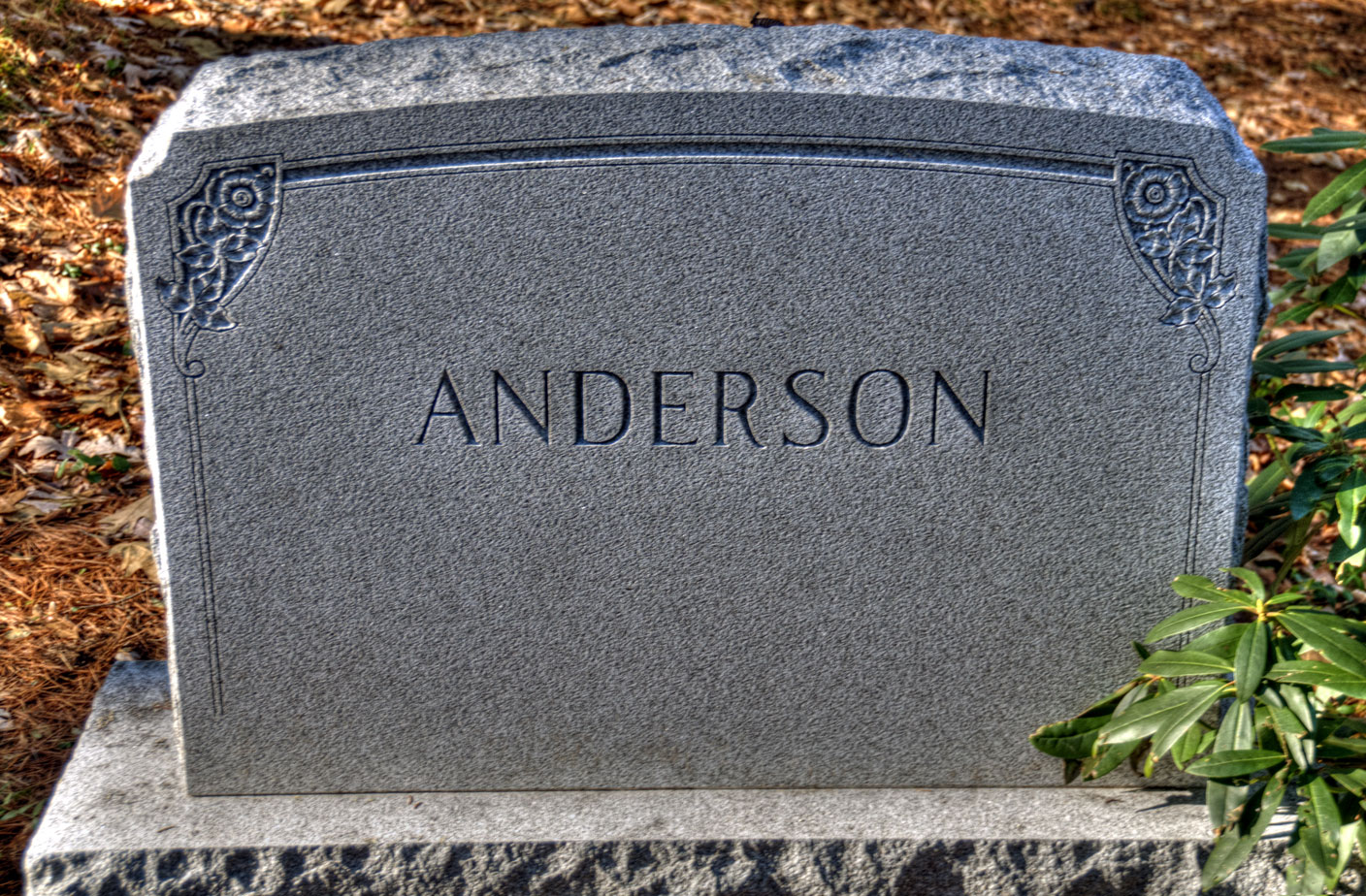 Amil Jans Anderson