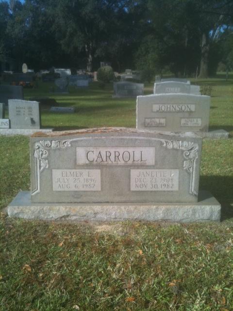 Elmer Ellsworth Bird Carroll