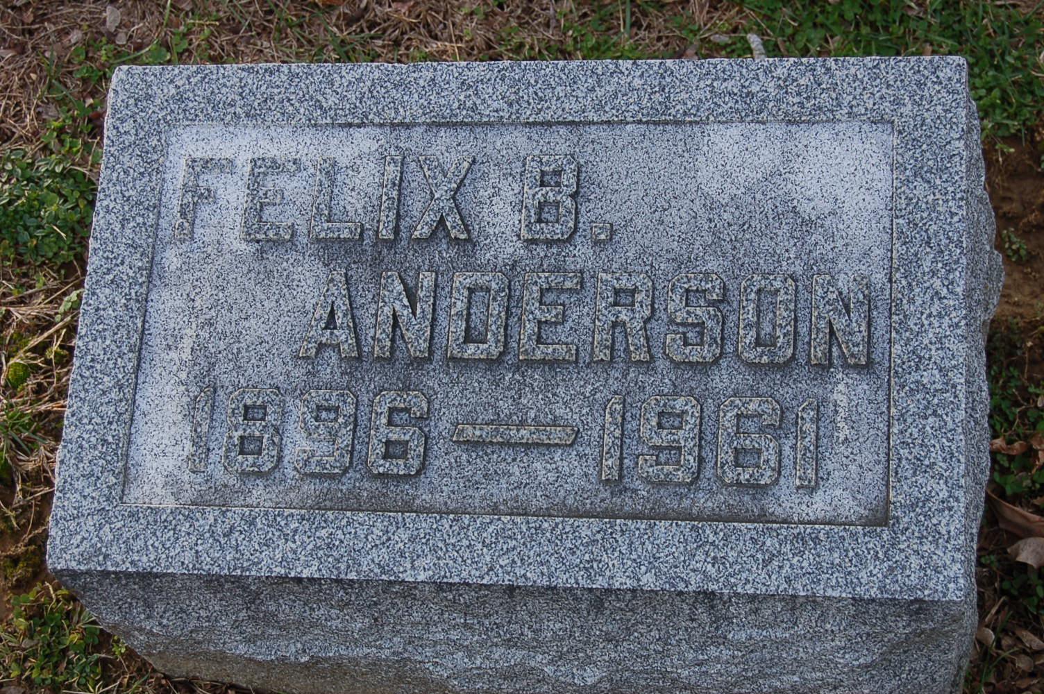 Felix Bryan Anderson