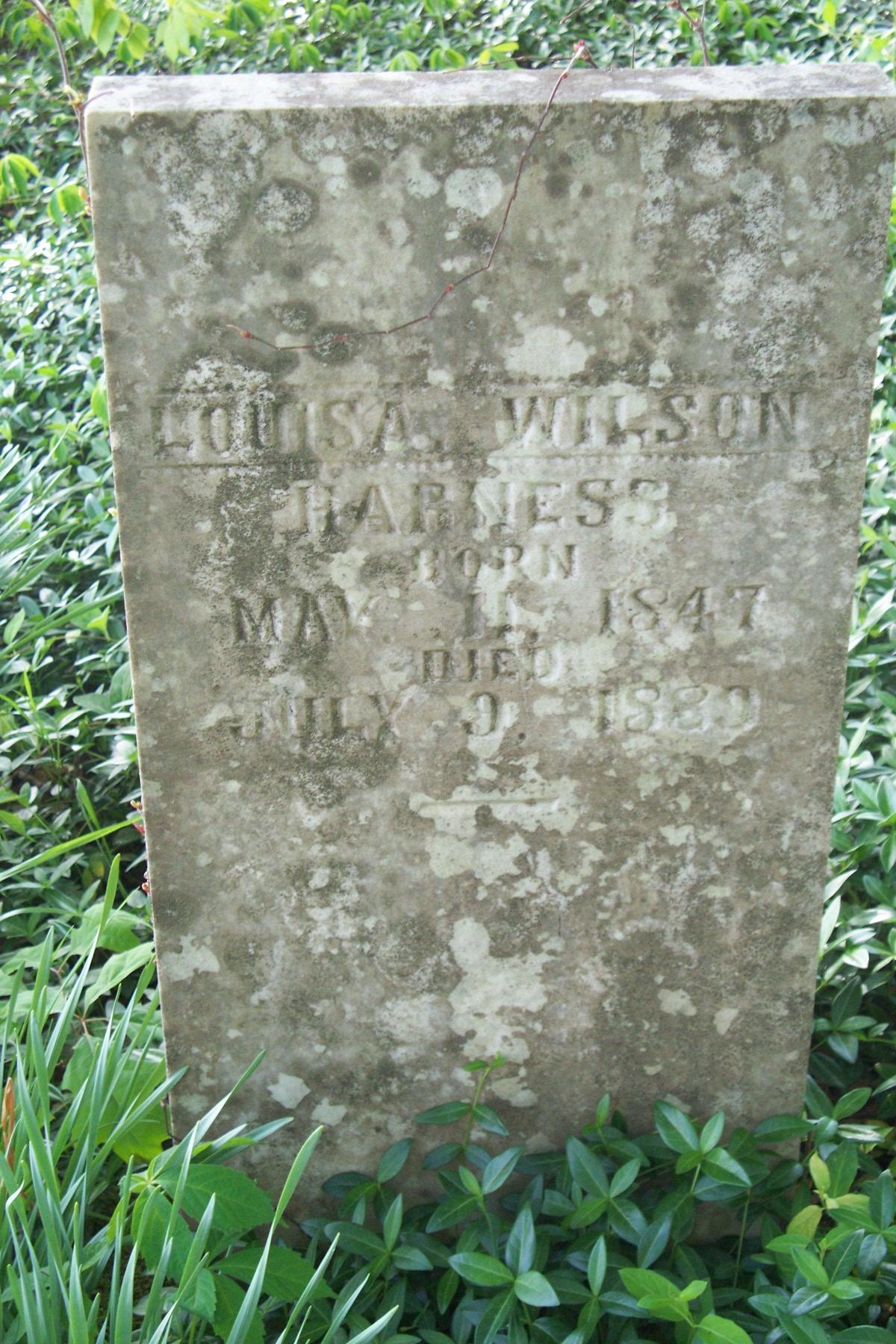 Louisa Wilson Harness