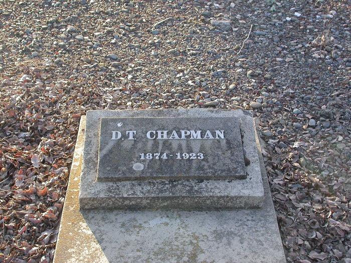 D T Chapman