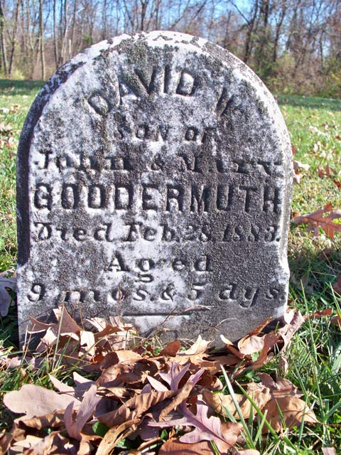 David H Goodermuth