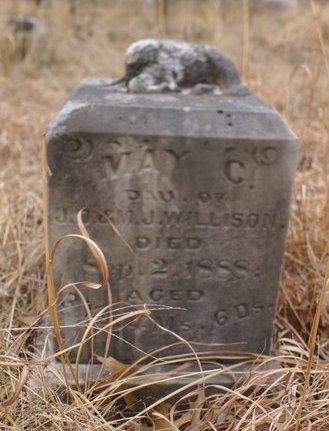 May C Willison