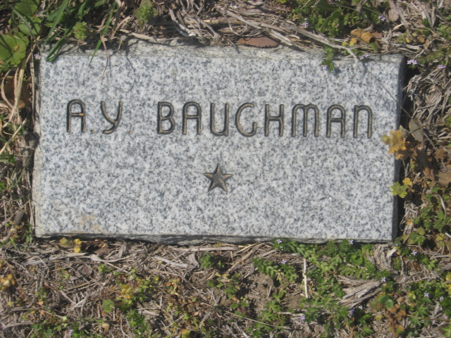A. Y. Baughman