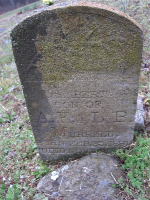 Albert Scott Merrell