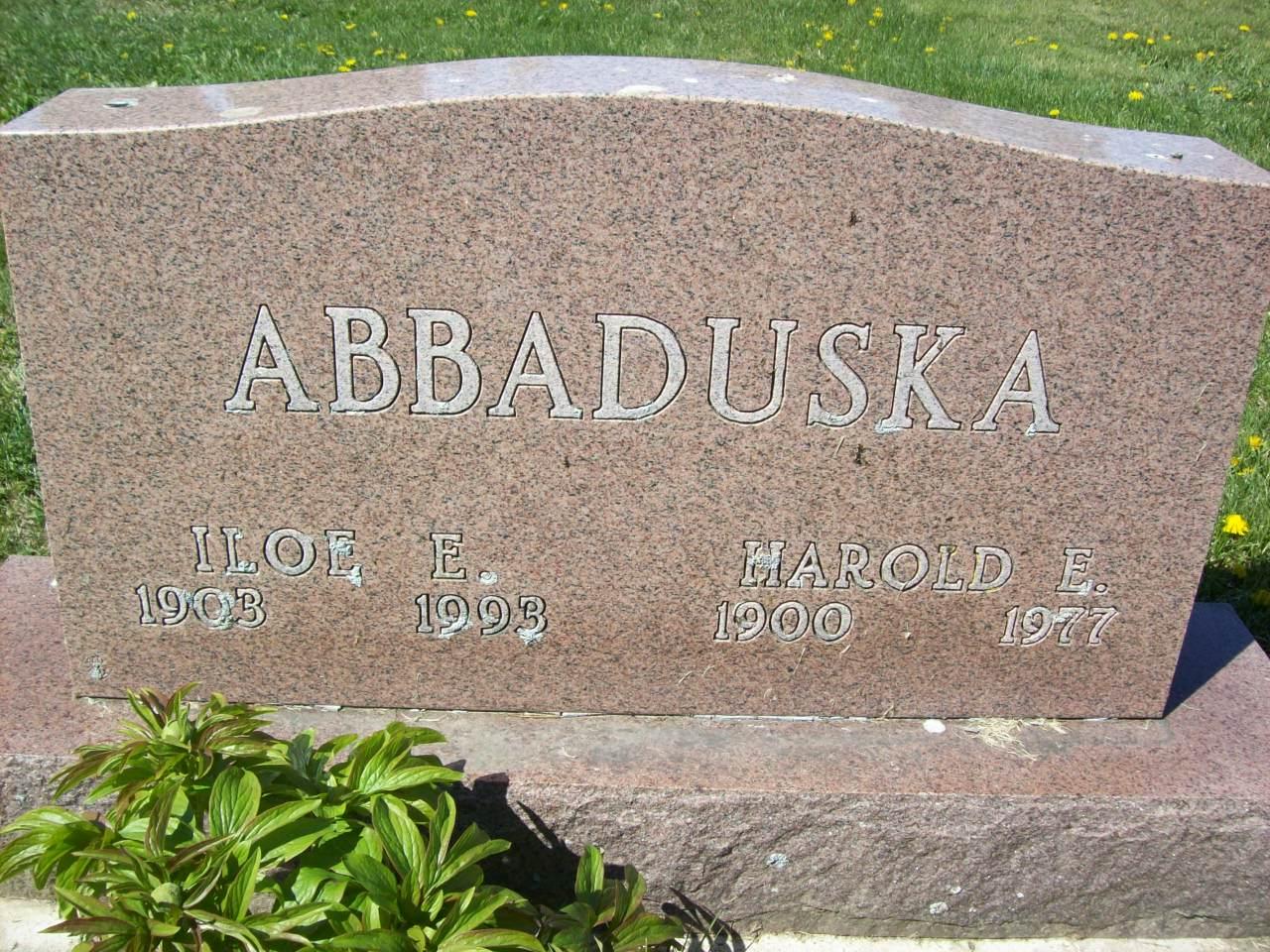 Harold E Abbaduska