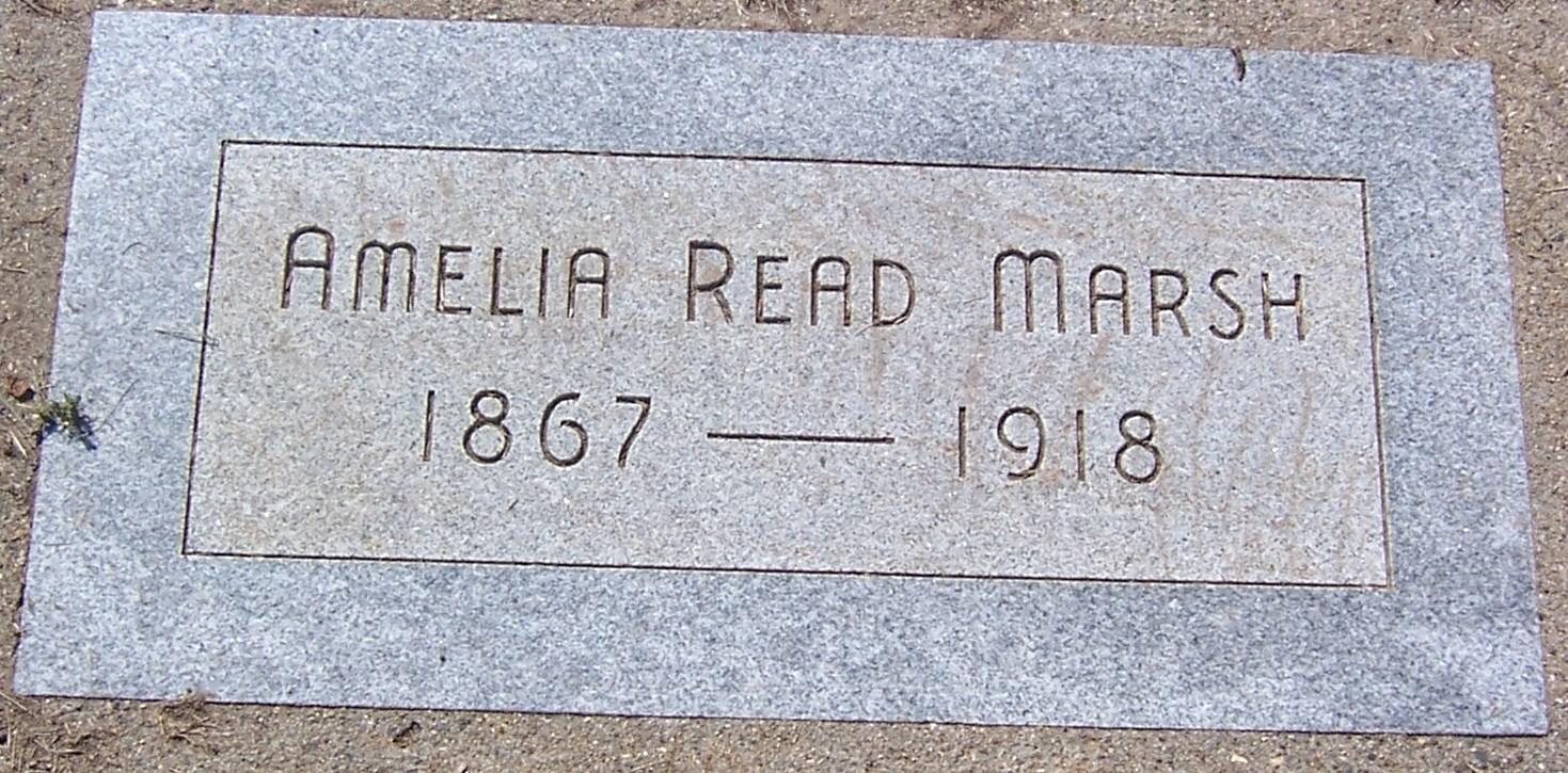 Amelia <i>Read</i> Marsh