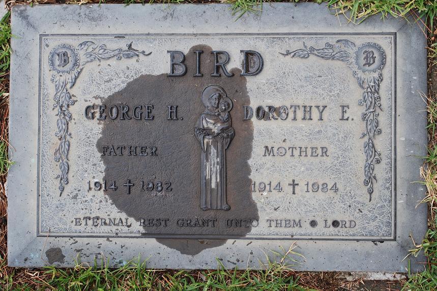 Dorothy Edna <i>Curtin</i> Bird