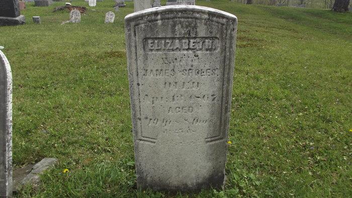 Elizabeth <i>Cowen</i> Sholes