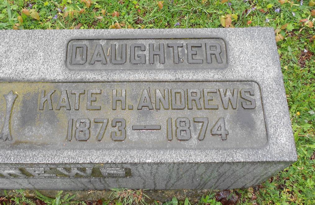Kate H Andrews