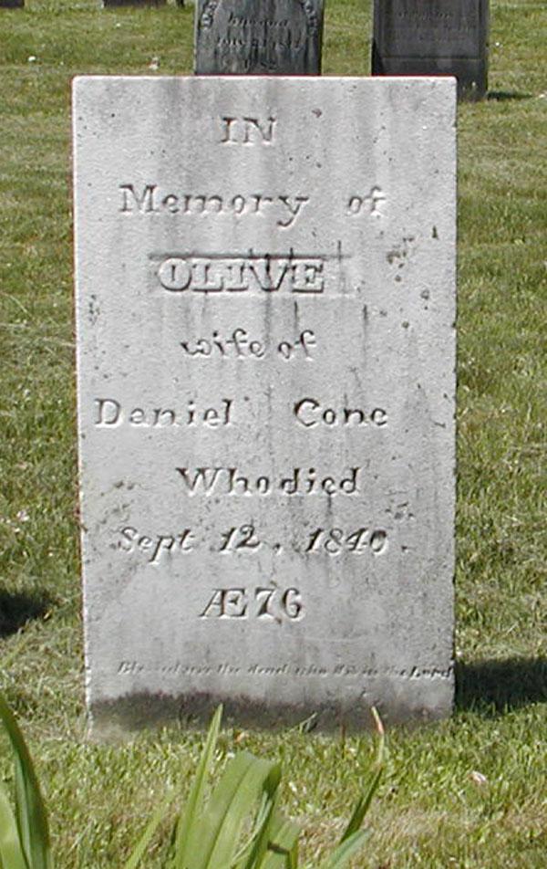 Olive <i>Ackley</i> Cone