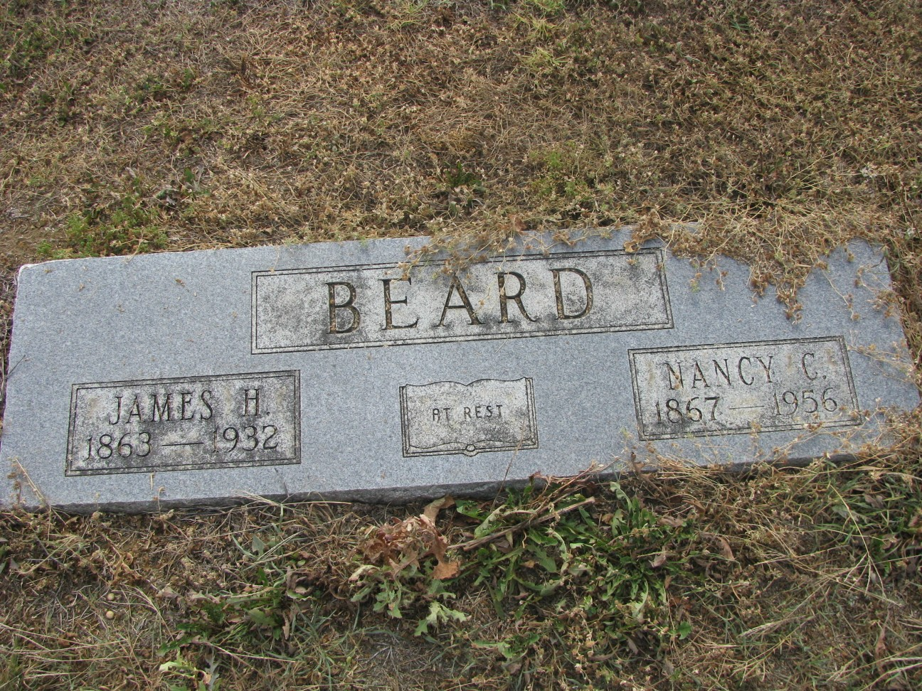 Nancy Catherine <i>Sharp</i> Beard