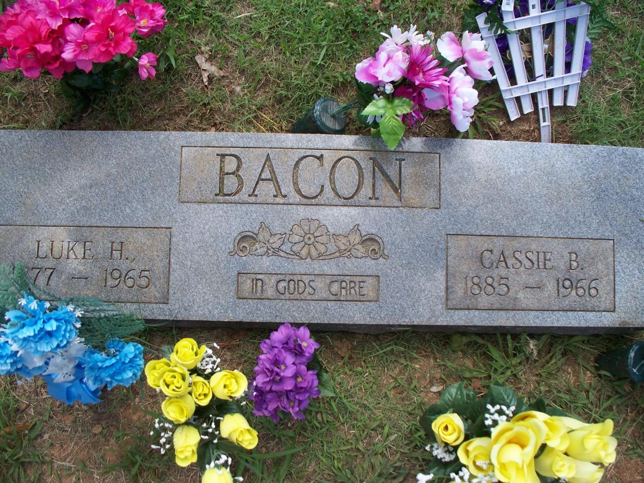 Luke H Bacon