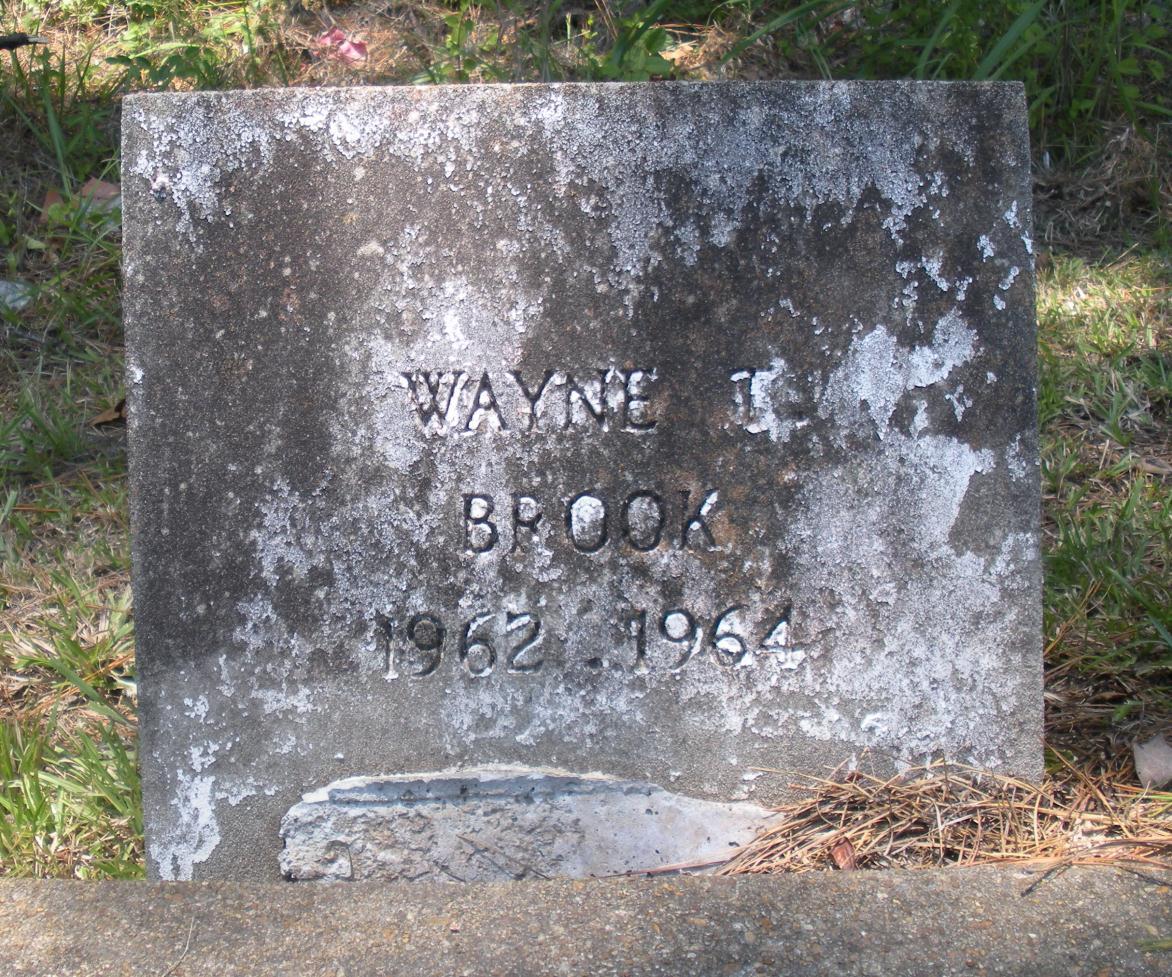 Wayne T. Brook