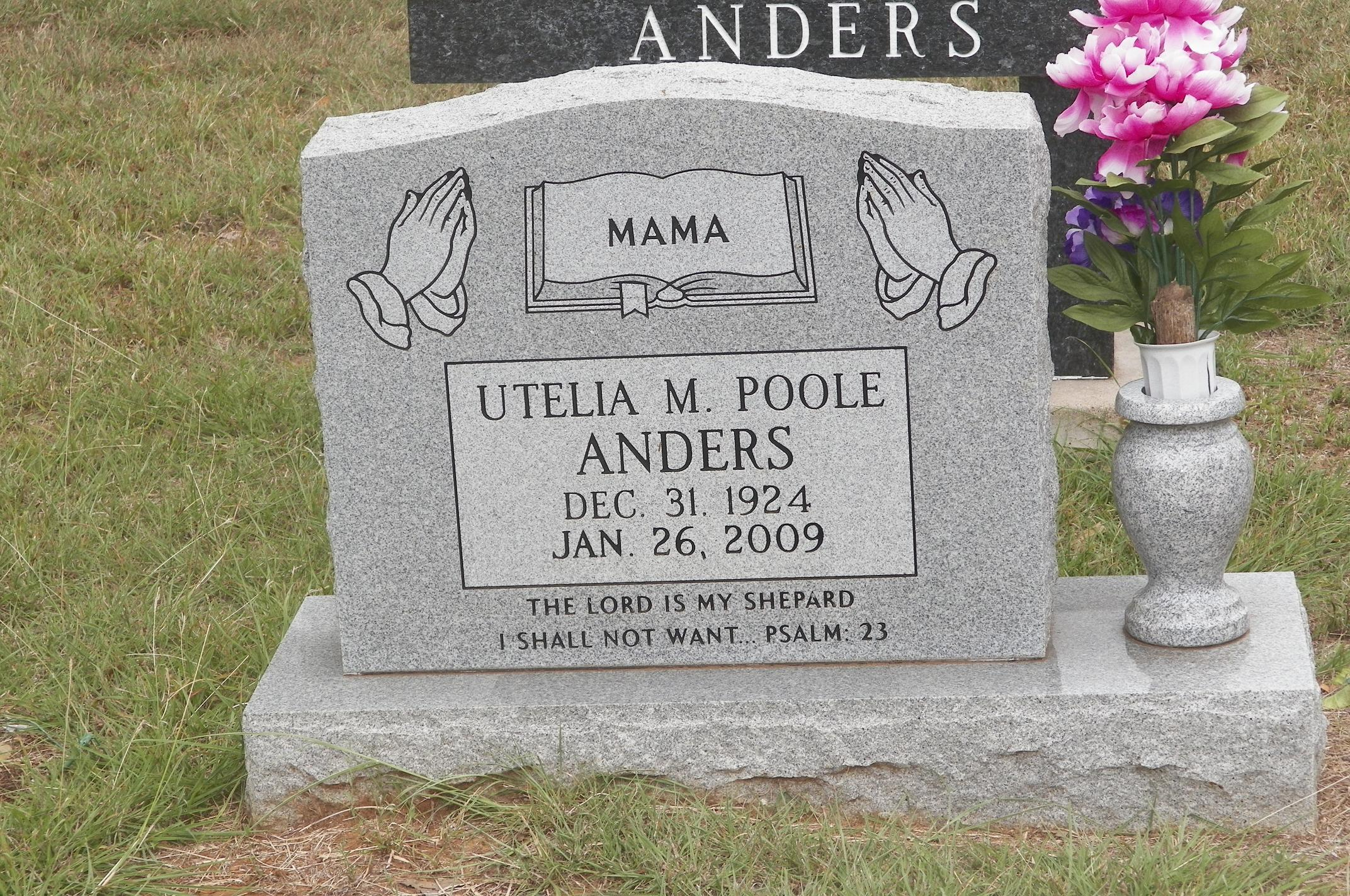 Utelia Magnolia <i>Poole</i> Anders