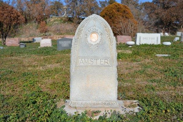 Tressa Virginia <i>Cox</i> Amster
