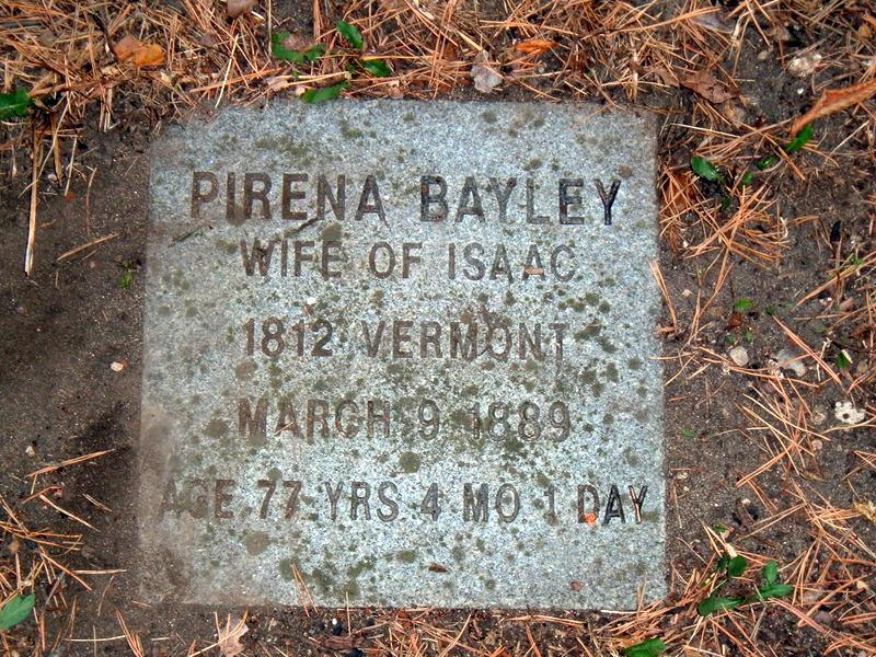 Pirena <i>Putnam</i> Bayley