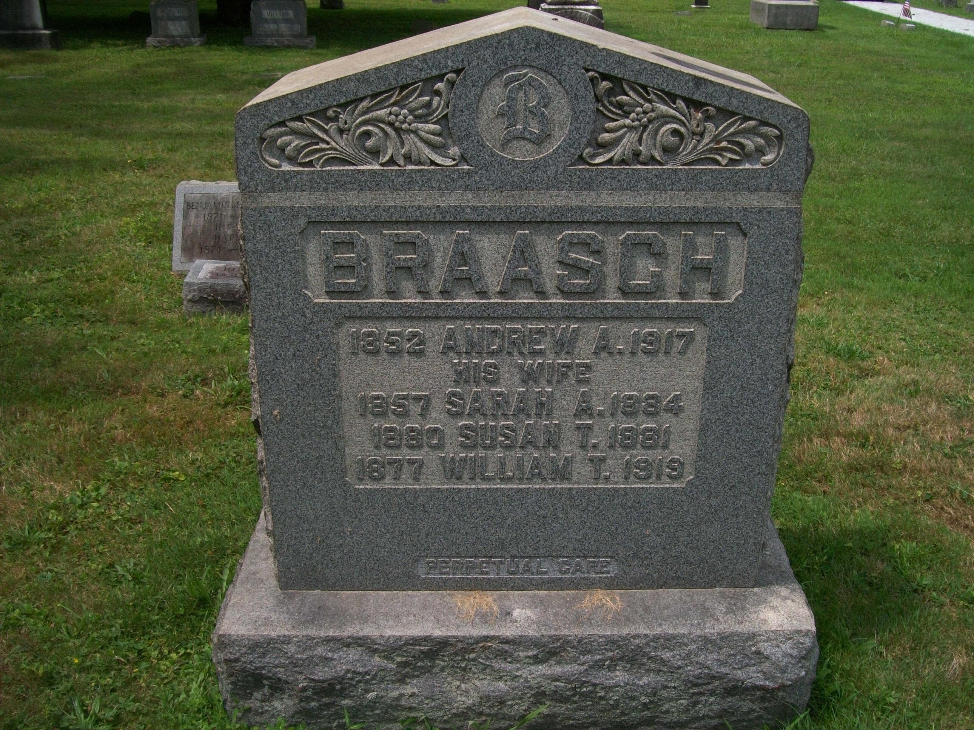 Susan T Braasch