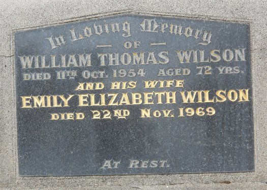 Emily Elizabeth Brown Wilson 1881 1969 Find A Grave Memorial Thomas wilson brown actor, director, producer demo reel cut 1 credits include: find a grave