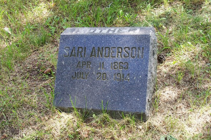 Sari Sarah <i>Fandin</i> Anderson