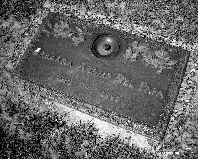 Barbara White <i>Adams</i> Del Papa