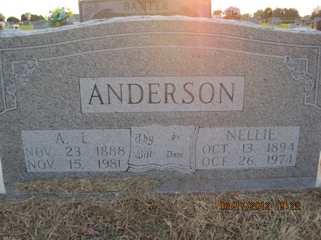 Author Lee Anderson
