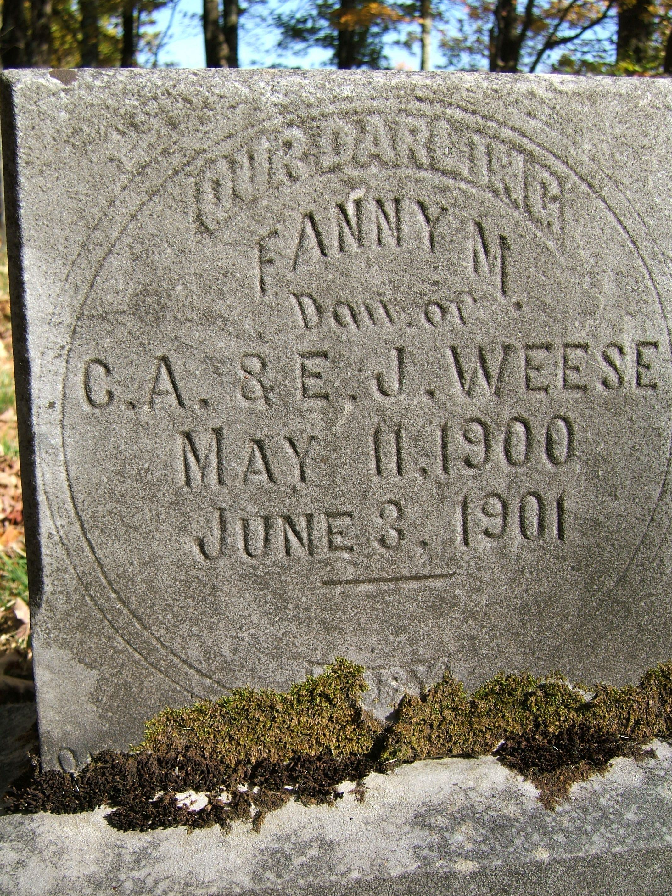 Fannie m weese 1900 1901 find a grave memorial
