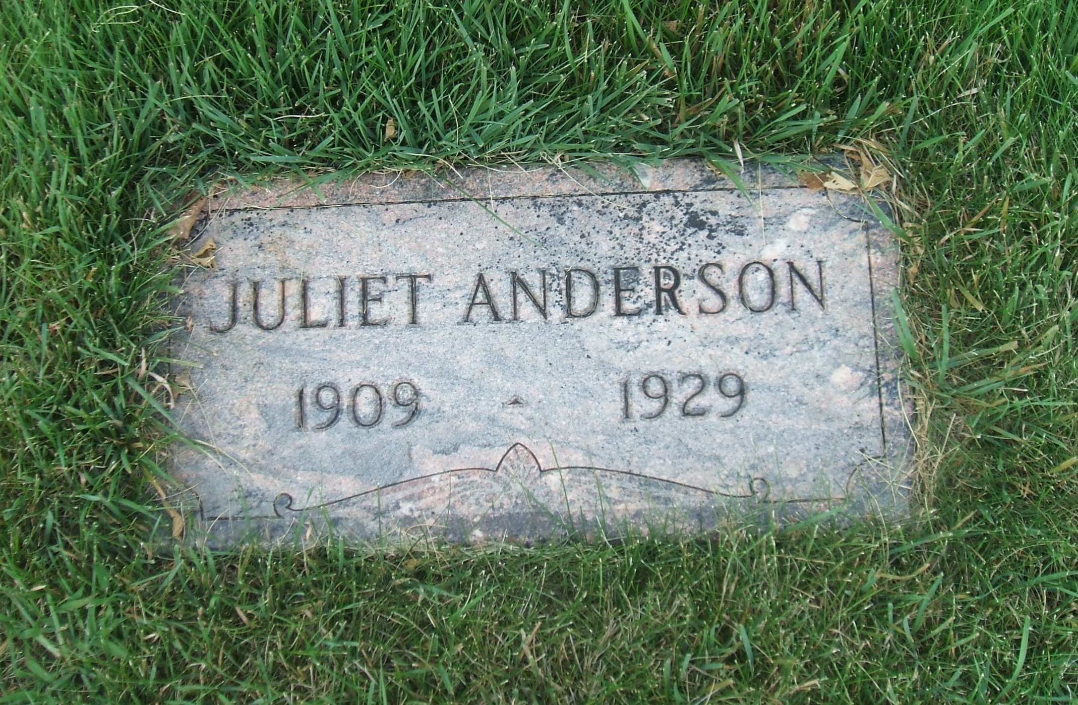 Watch Juliet Anderson video