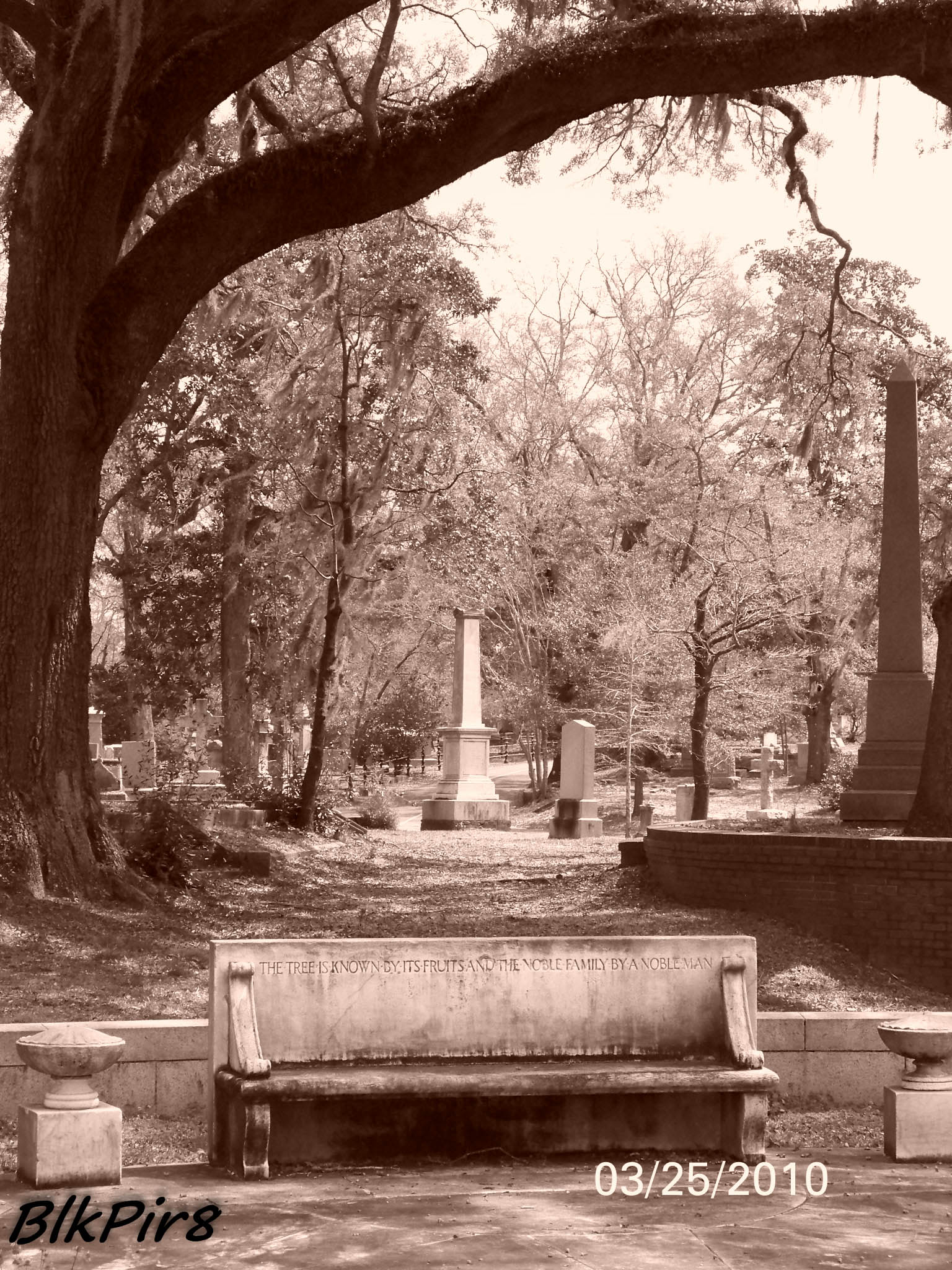 Oakdale Cemetery Wilmington Nc Map.Oakdale Cemetery In Wilmington North Carolina Find A Grave Cemetery