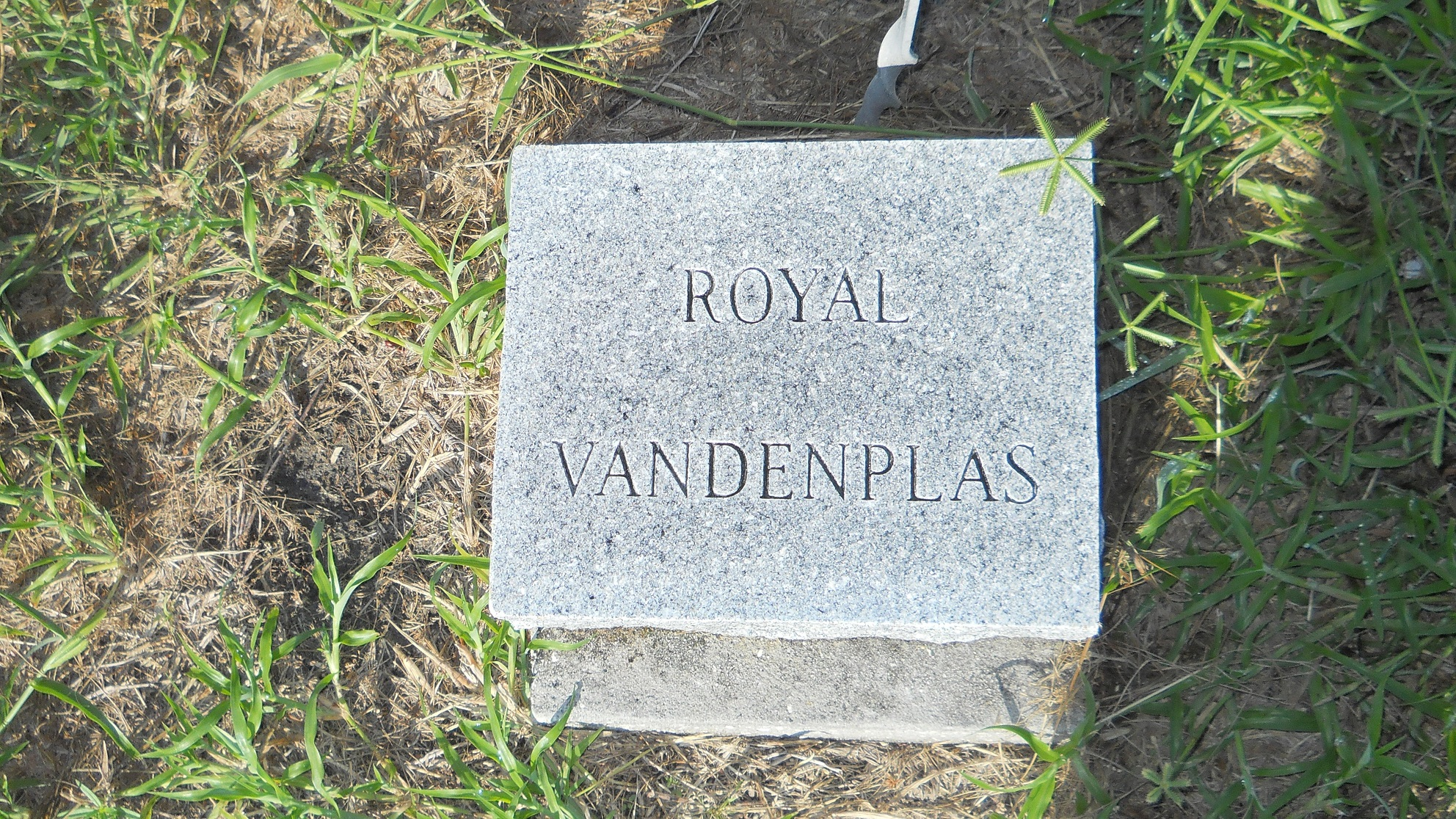 Royal W VanDenplas