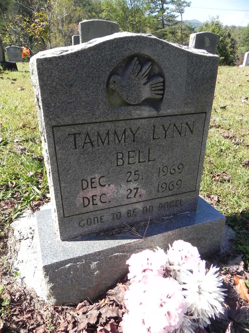 Tammy Lynn Bell