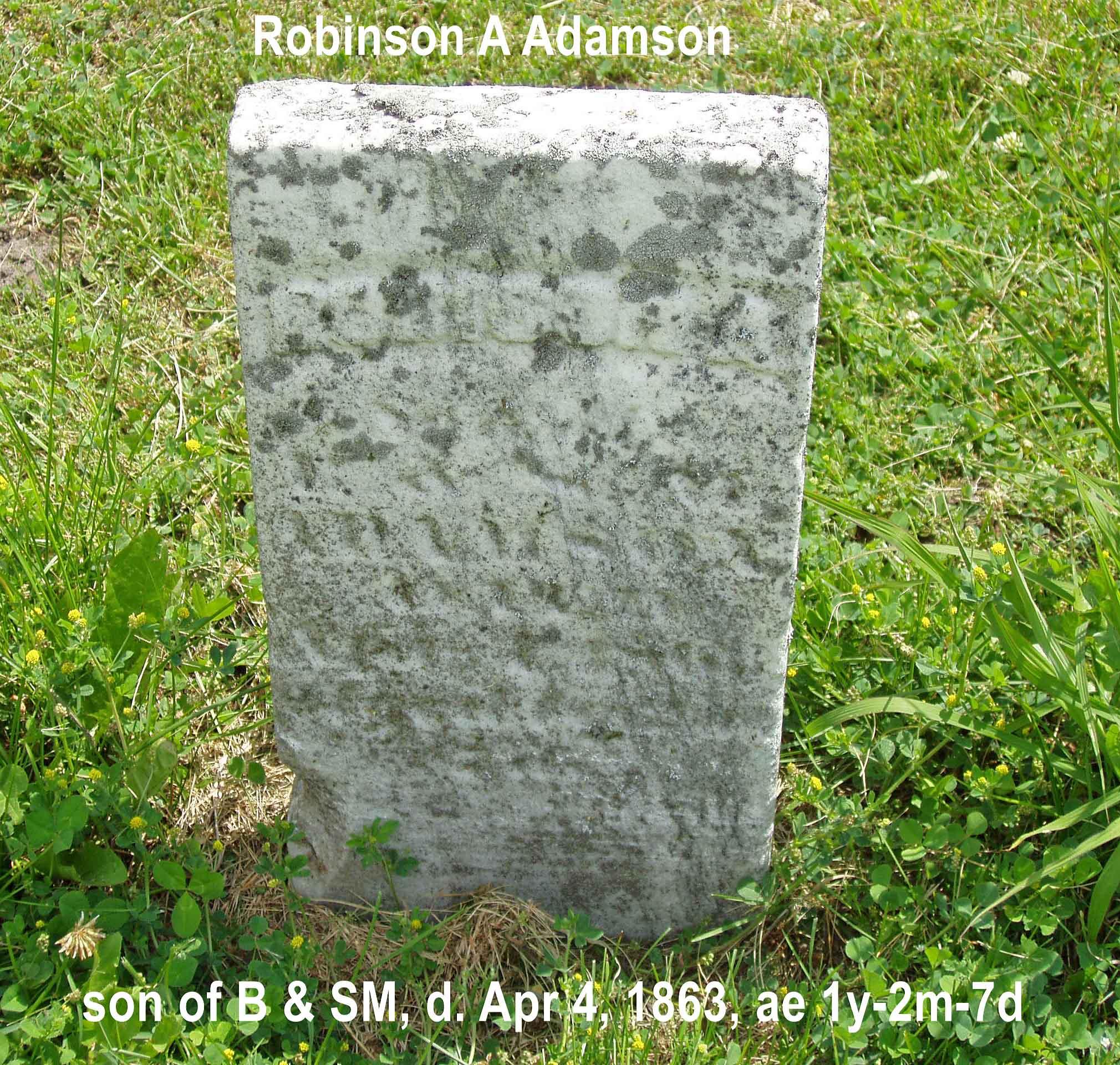 Robison A Adamson